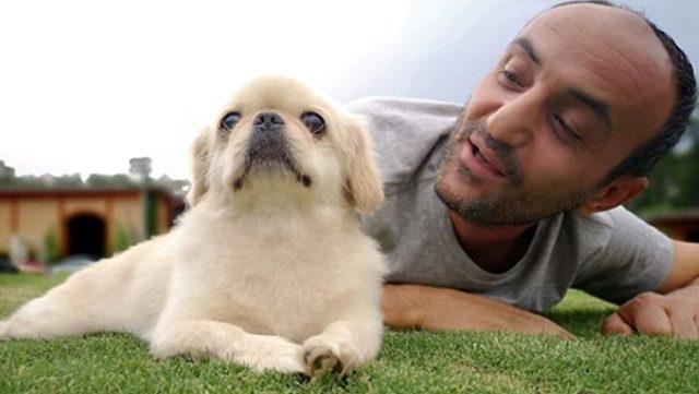 Köpeğinin öldüğünü bilmeyen Ersin Korkut'un sözleri duygulandırdı: Köpeğimi merak ediyorum acaba beni tanıyacak mı?